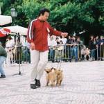 Exposições 2003